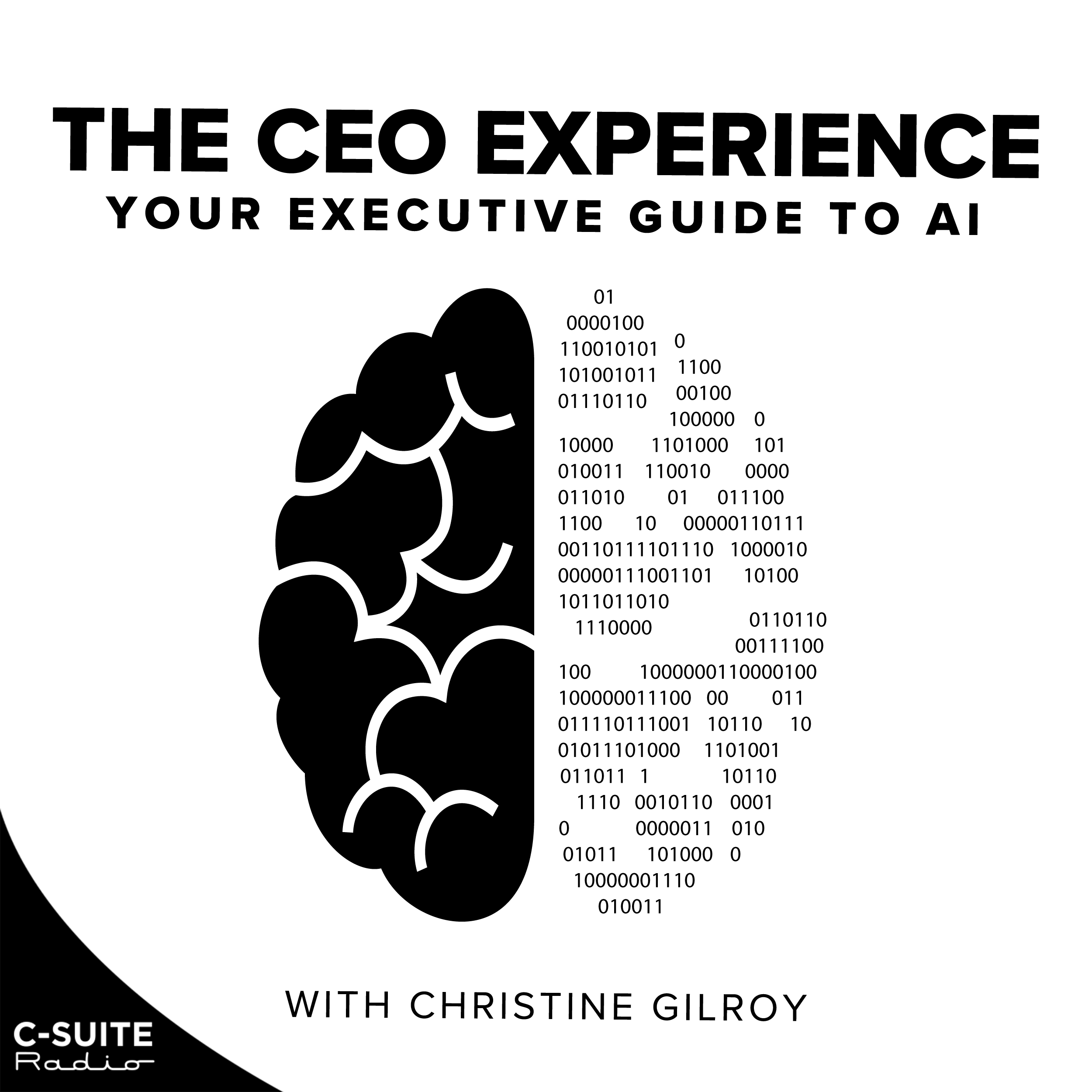 The CEO Experience: Your Executive Guide to AI