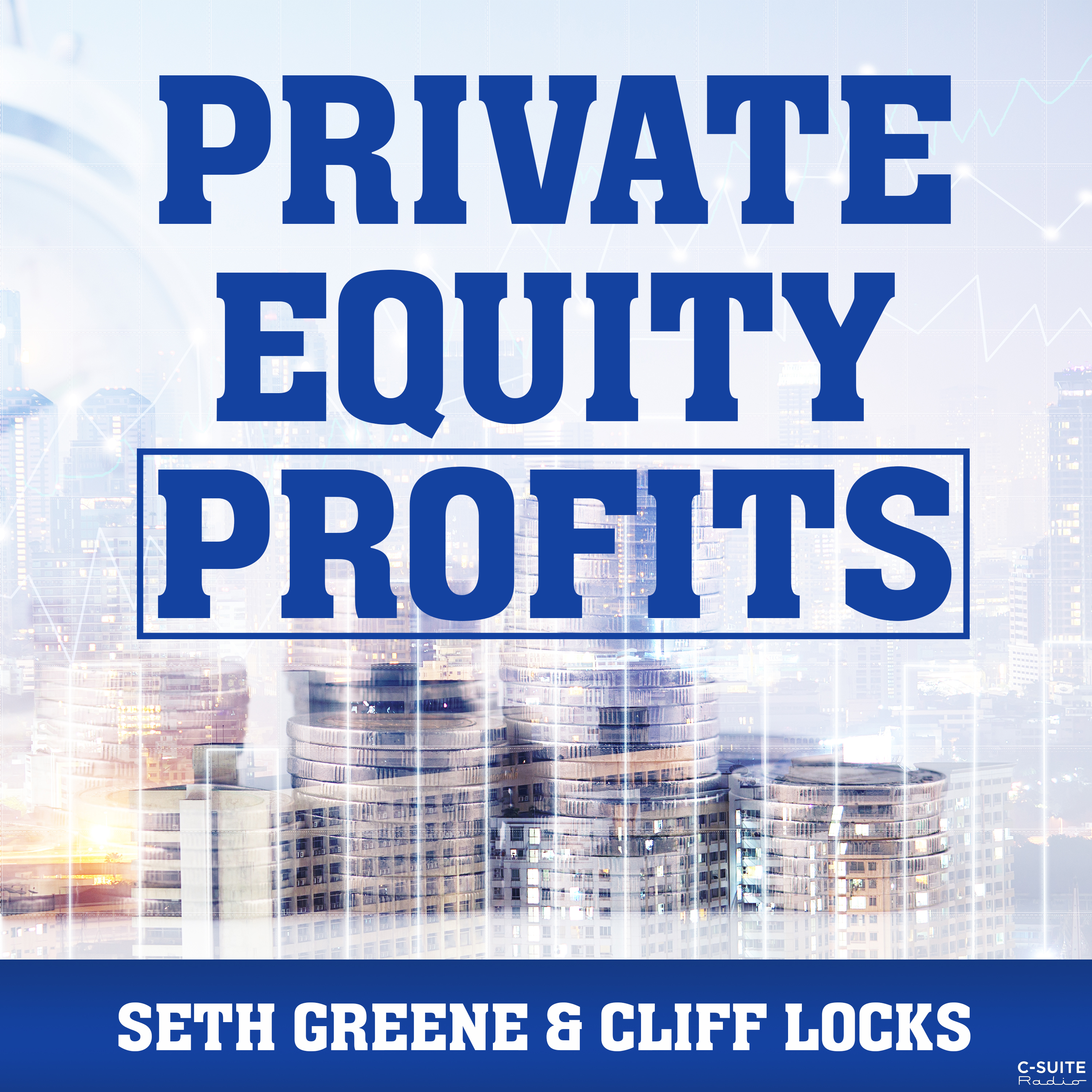 Private Equity Profits