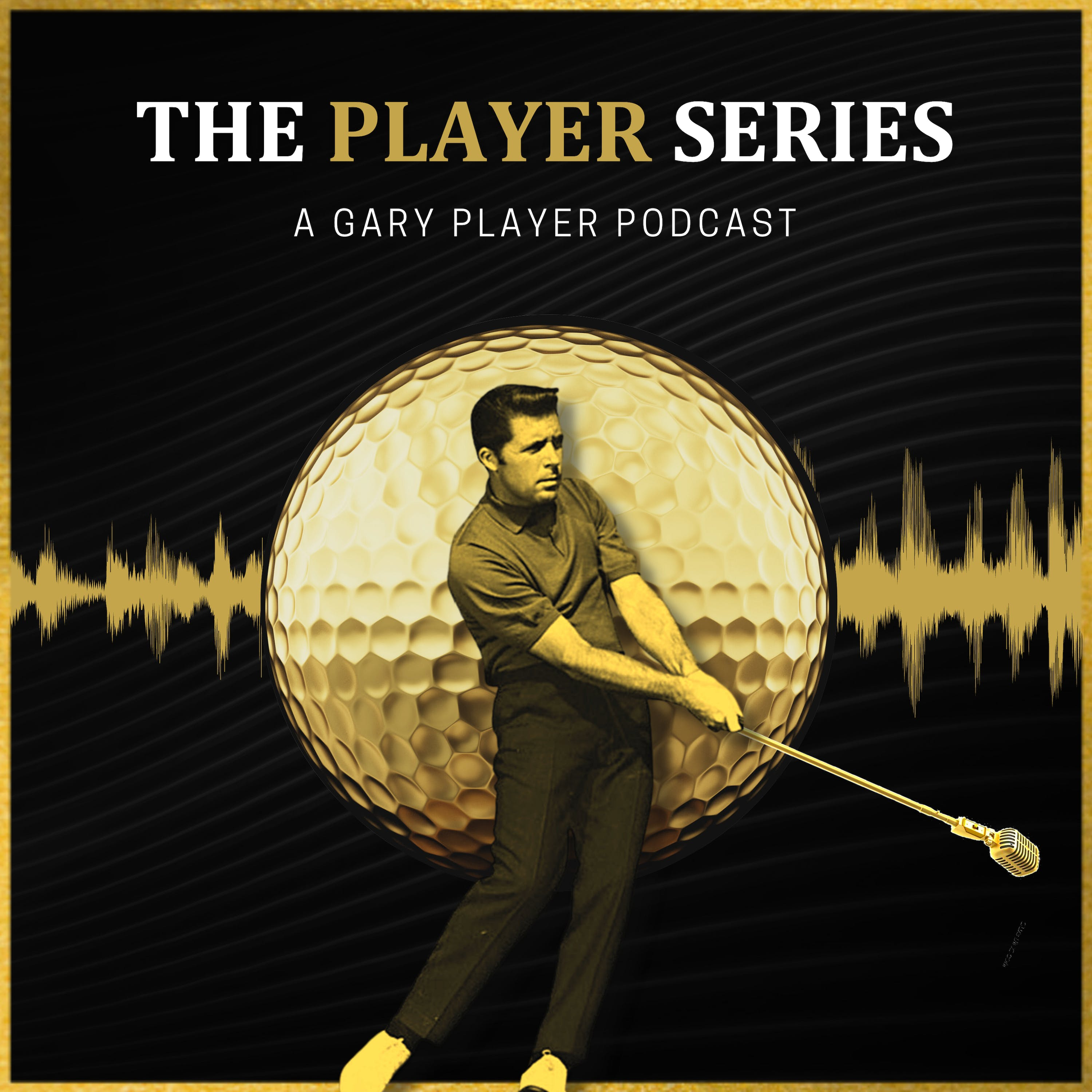 The Player Series podcast show image