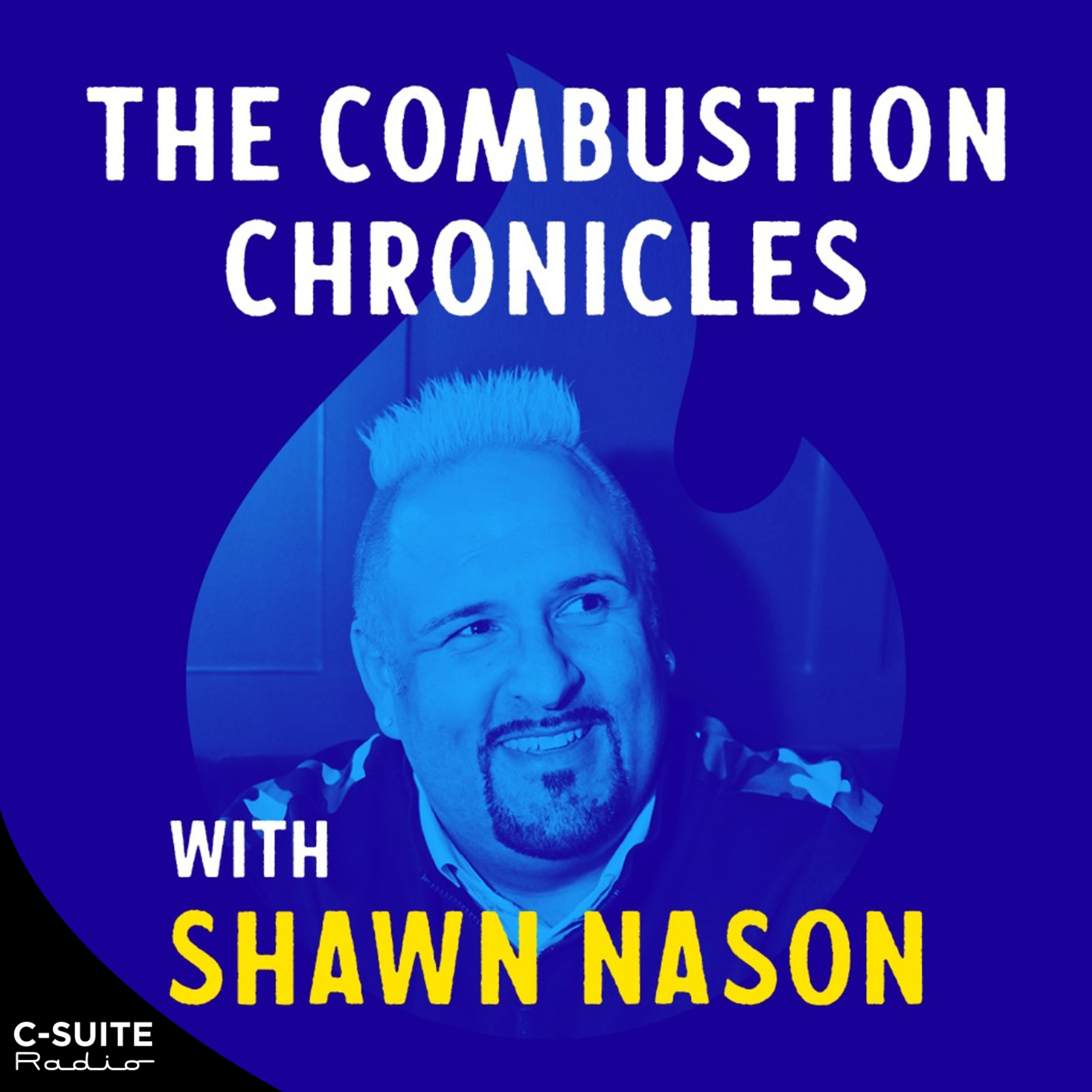 The Combustion Chronicles