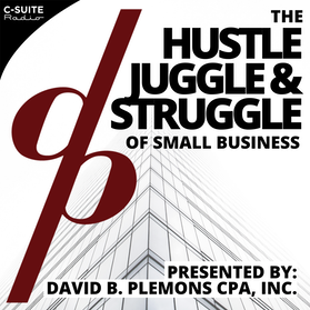 The Hustle, Juggle, and Struggle of Small BusinessThe Hustle, Juggle, and Struggle of Small Business