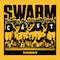 Swarmcast: An Iowa Hawkeyes podcast
