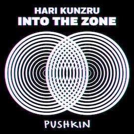Into the Zone