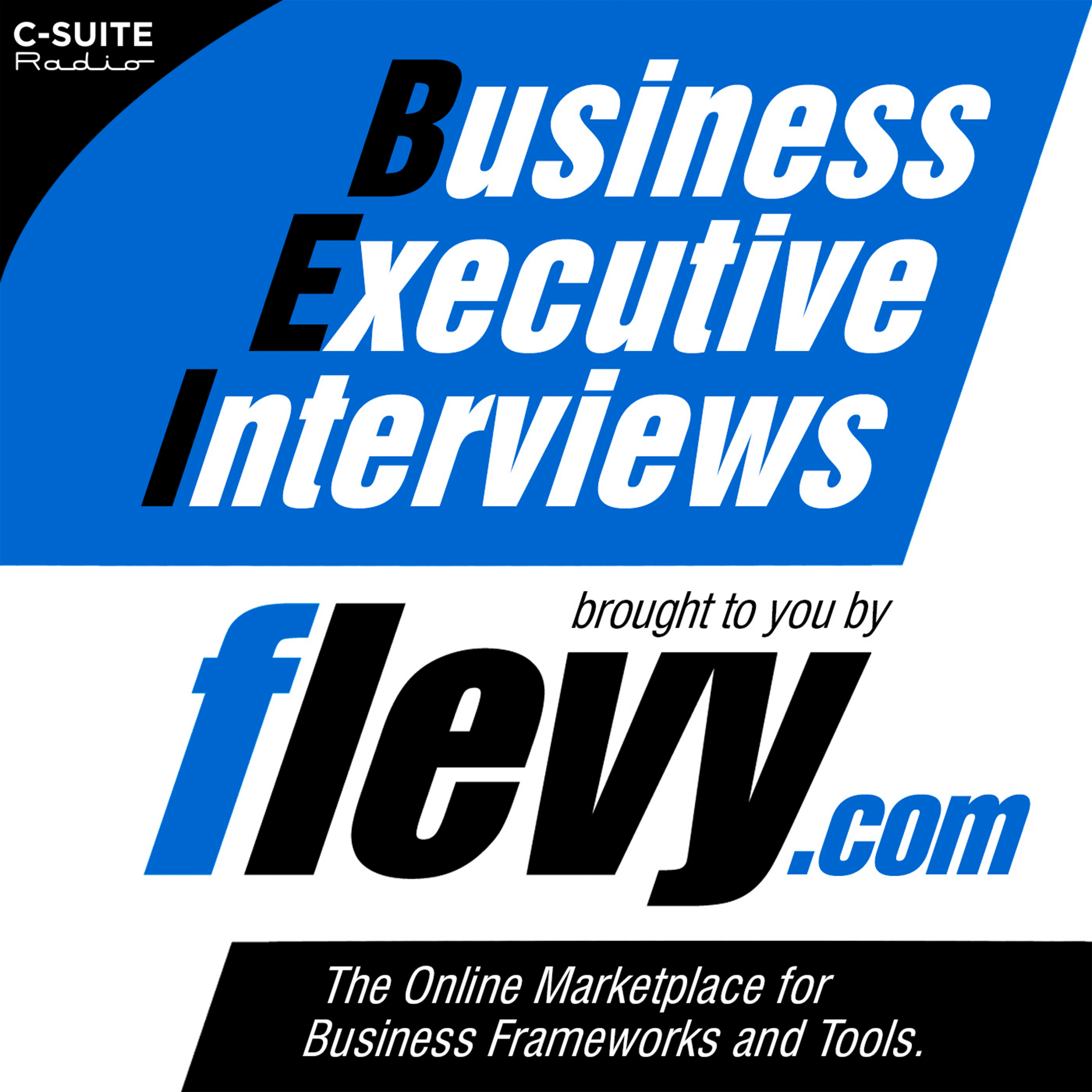 Business Executive Interviews