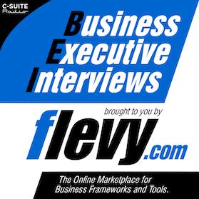 Business Executive Interviews