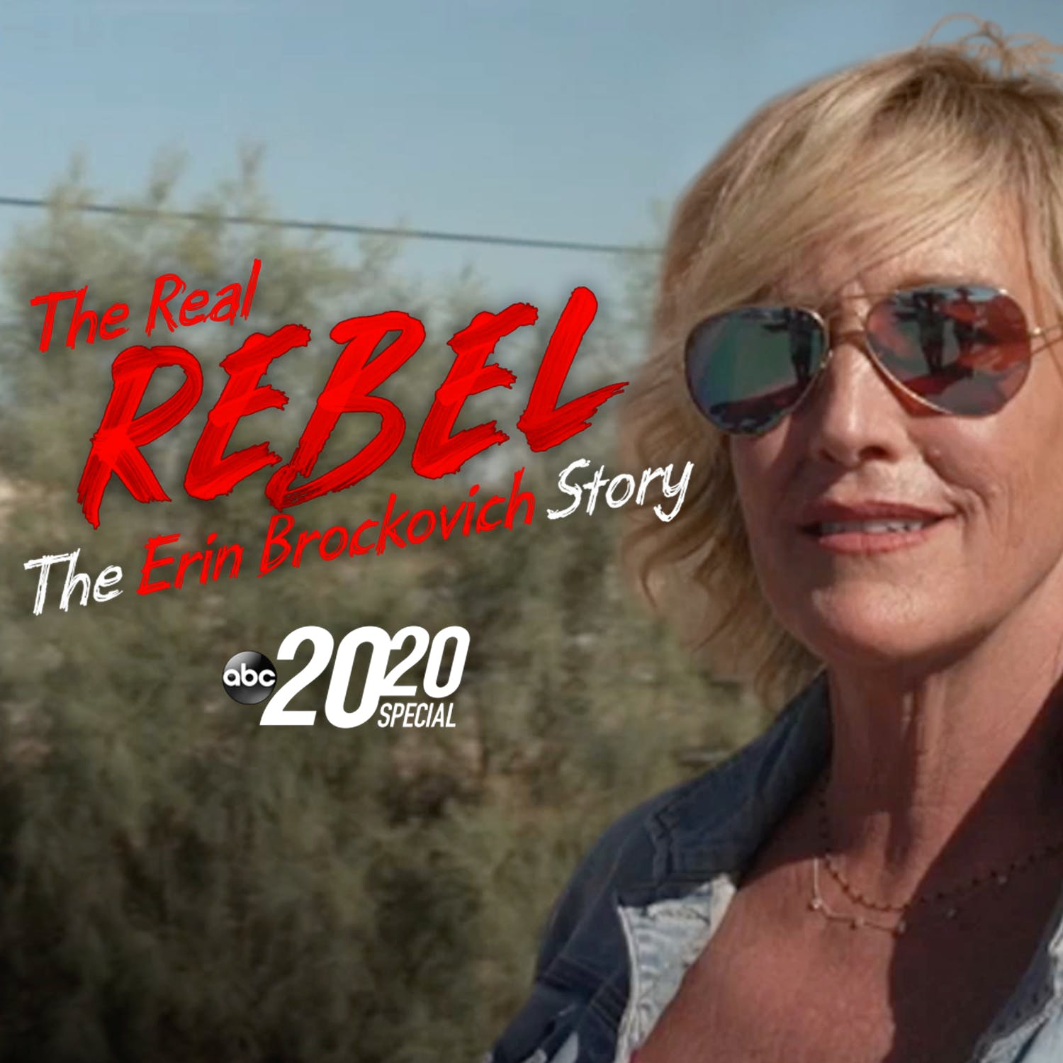 The Real Rebel: The Erin Brockovich Story
