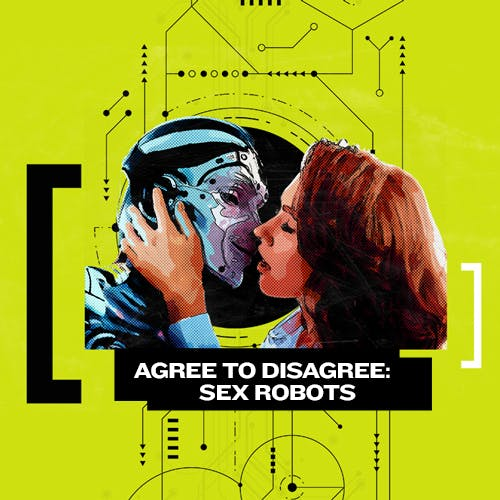 Agree to Disagree: Sex with Robots