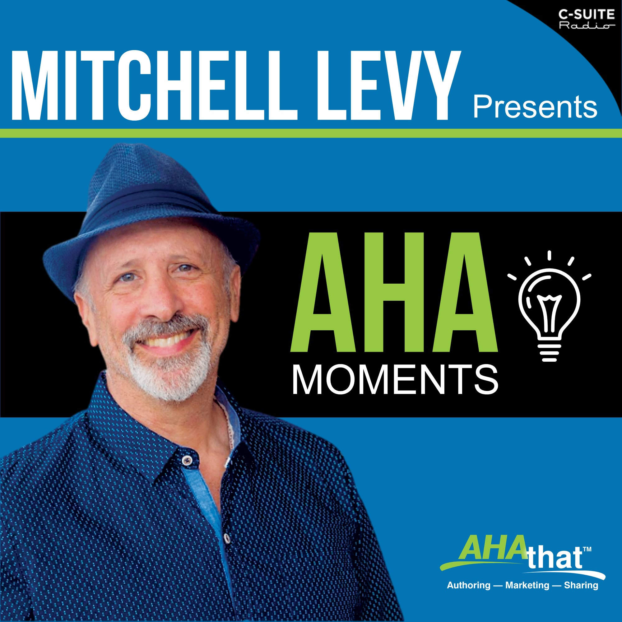 Mitchell Levy Presents AHA Moments
