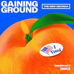 Gaining Ground: The New Georgia