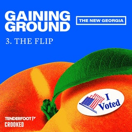 The Flip  | 3