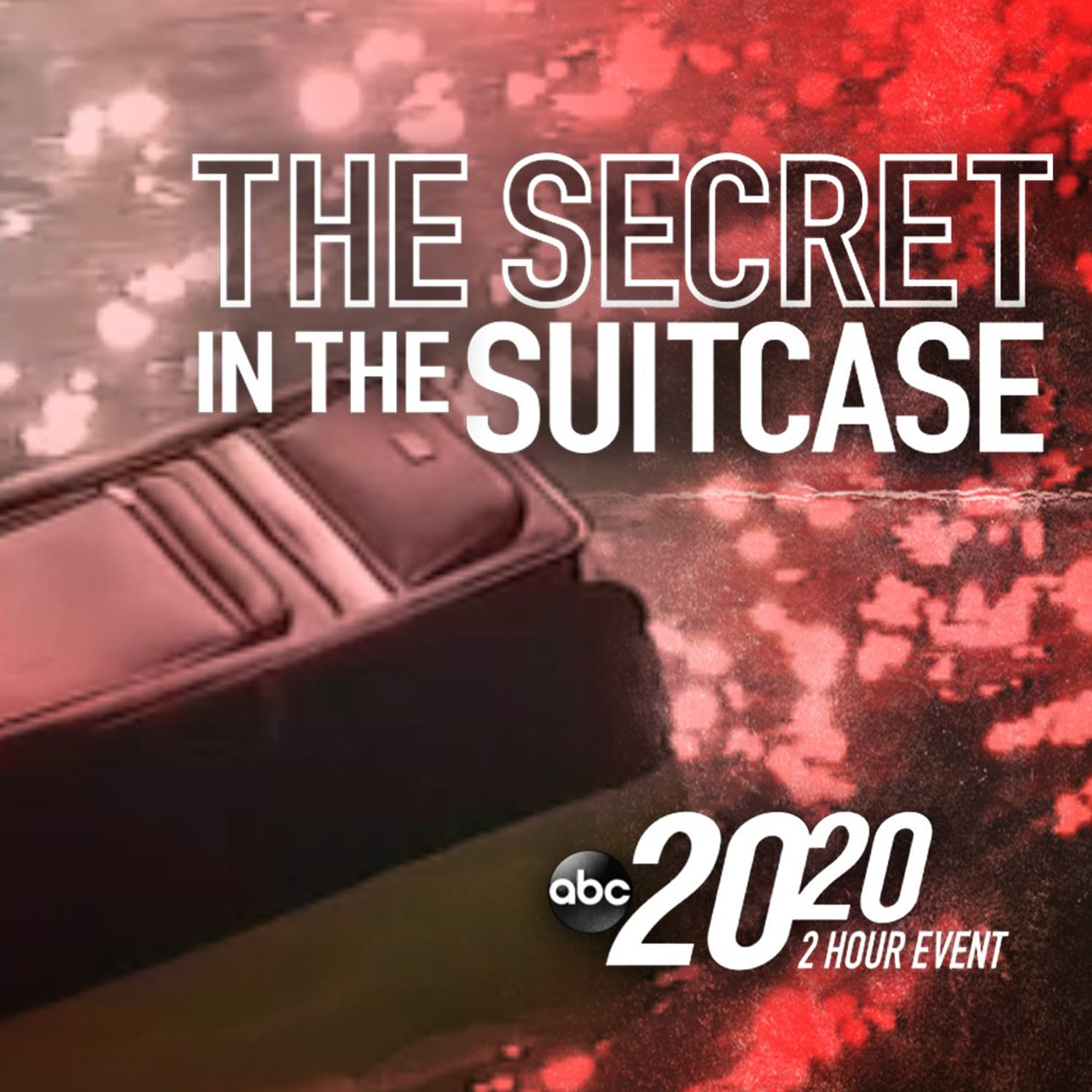 The Secret in the Suitcase