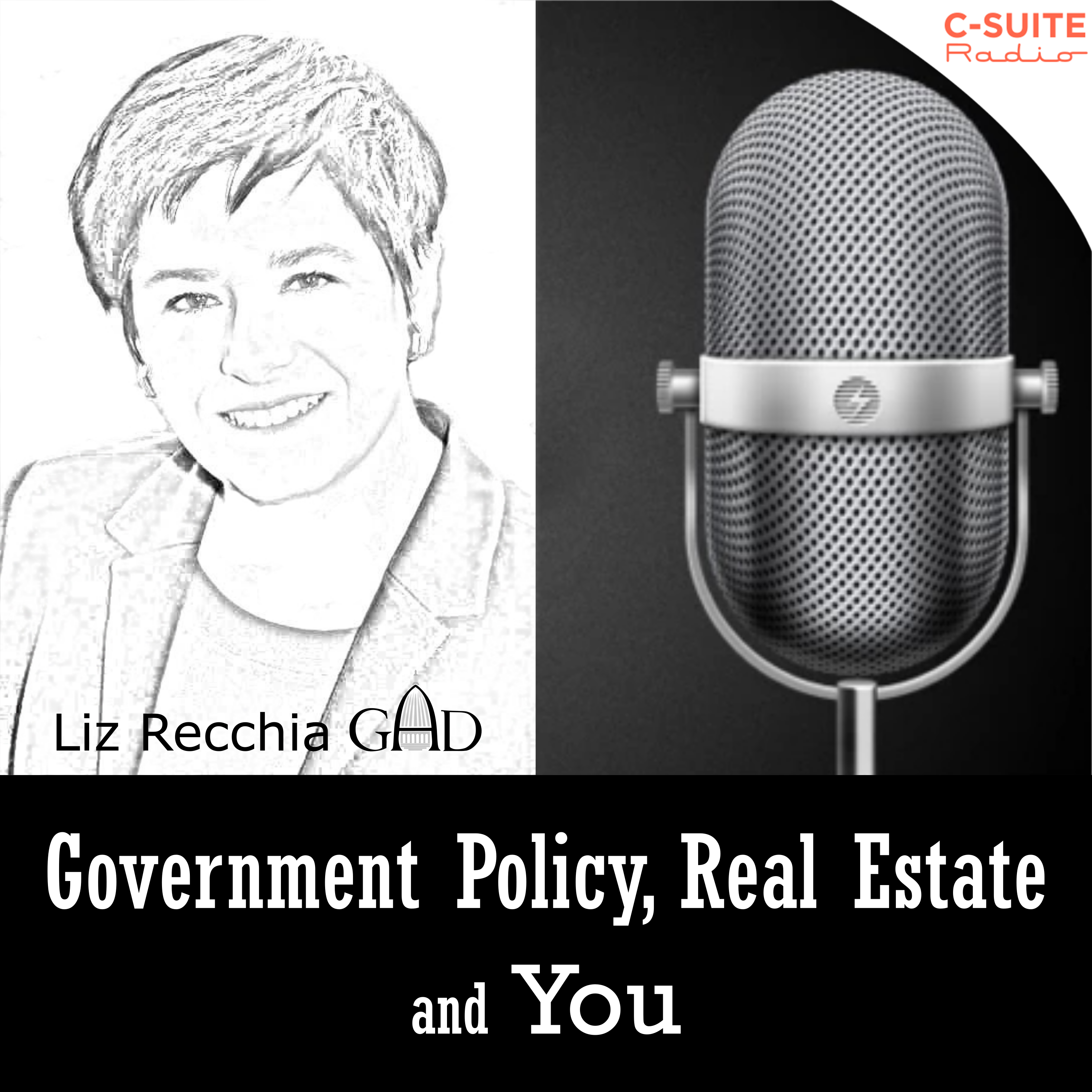 Government Policy, Real Estate and You!
