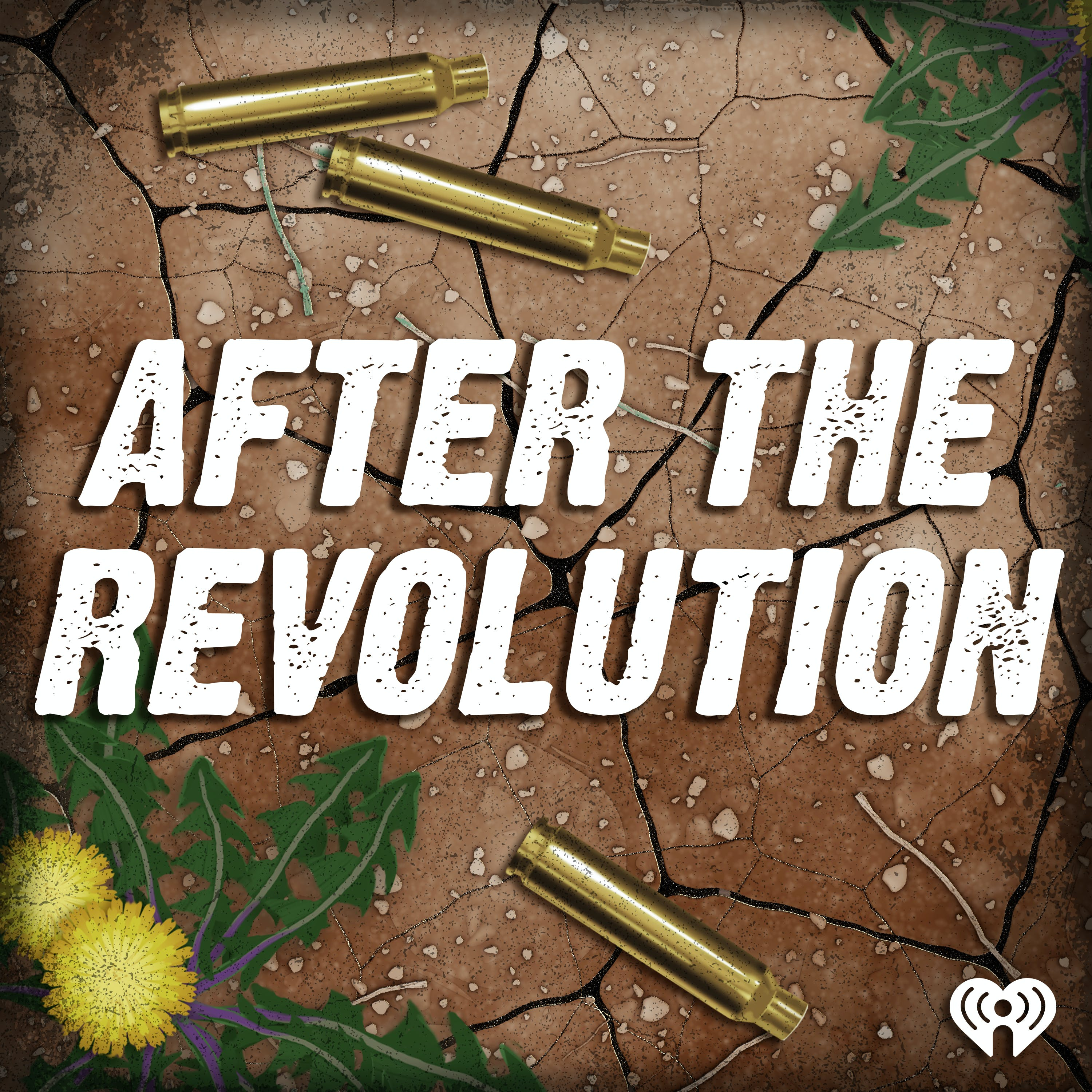Introducing: After the Revolution
