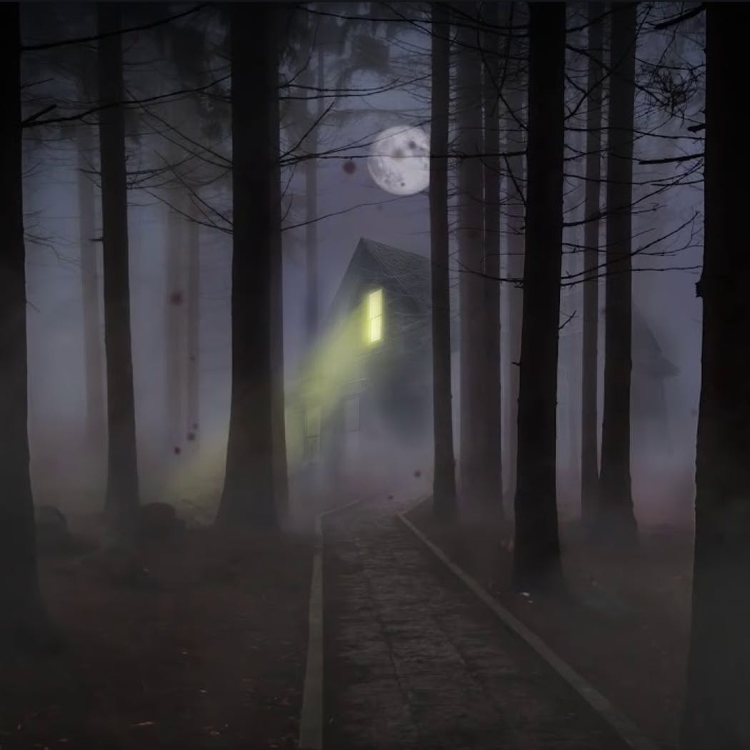 3 Unsettling Horror Stories in the Woods